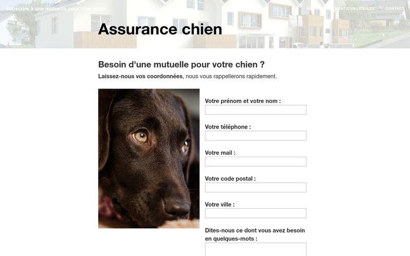 Existe-t-il des assurance santé pour les chiens ?